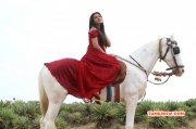 Latest Pic Neelam Upadhyaya Film Actress 5390