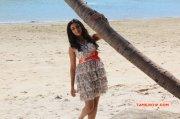 Recent Wallpapers Neelam Upadhyaya Tamil Actress 3695