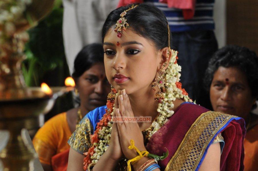 Tamil Actress Neeti Taylor 8443