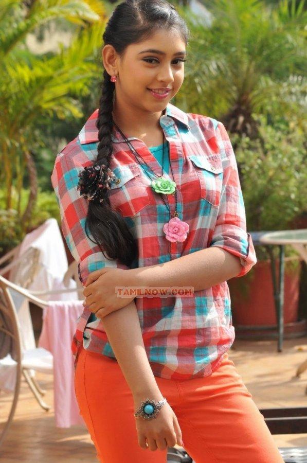 Tamil Actress Neeti Taylor Photos 2275