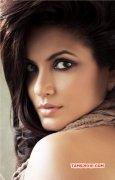 Neetu Chandra Tamil Actress Latest Album 438