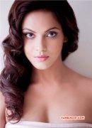 New Albums Neetu Chandra Tamil Actress 8659