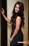 Picture Tamil Movie Actress Neetu Chandra 6187