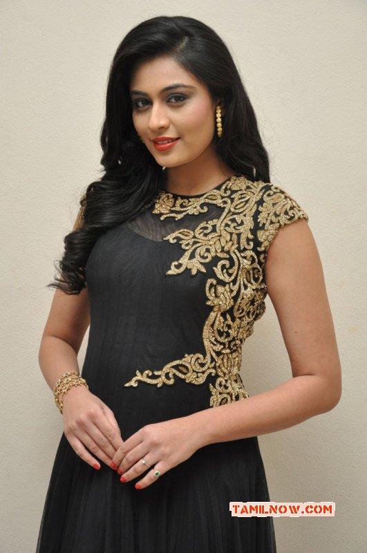 Dec 2015 Albums Neha Hinge South Actress 8471