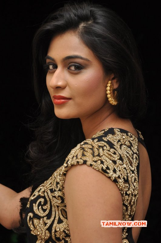 Neha Hinge Indian Actress Gallery 8227