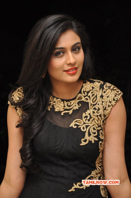 South Actress Neha Hinge Dec 2015 Wallpapers 1264