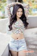 New Pics Film Actress Nikesha Patel 4780