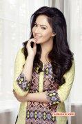 Recent Album Nikesha Patel Heroine 9231