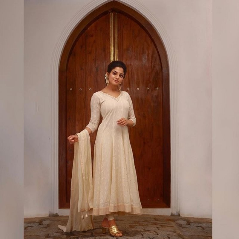 Pictures Nikhila Vimal South Actress 4863