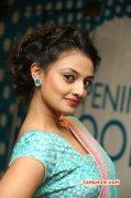 2014 Still South Actress Nikitha Narayan 4873