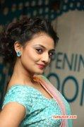 Dec 2014 Wallpaper Nikitha Narayan Tamil Heroine 4706