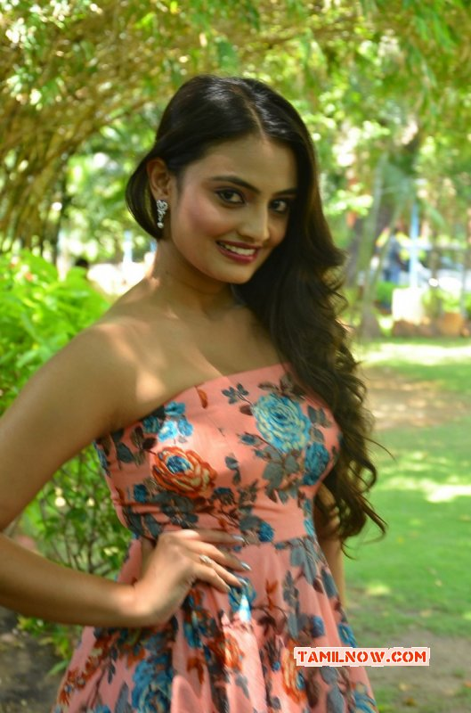 Film Actress Nikitha Narayan New Albums 8593