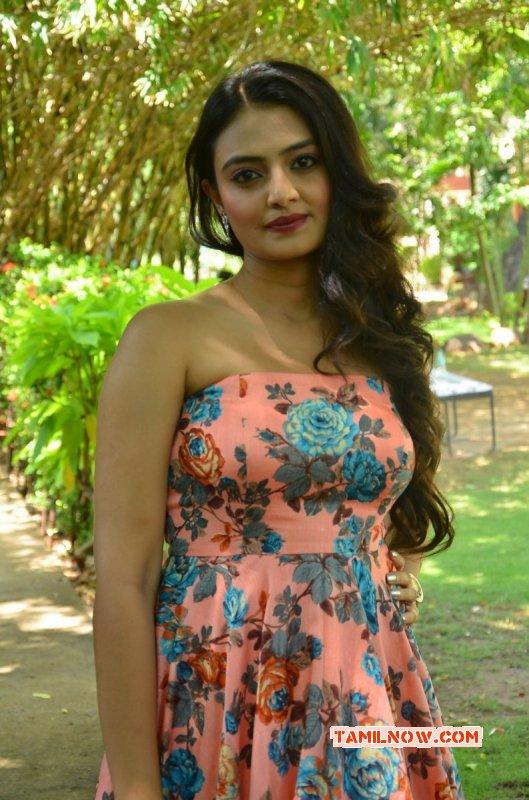 Latest Image Nikitha Narayan Indian Actress 7371