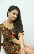 Latest Images Cinema Actress Nikitha Narayan 2557