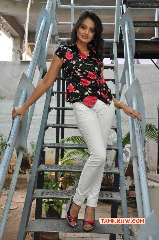 Latest Images Nikitha Narayan Tamil Movie Actress 8103