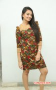 Latest Photos Nikitha Narayan Actress 9957