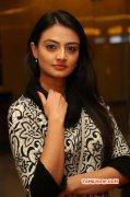 Latest Pic Indian Actress Nikitha Narayan 3997