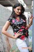 New Image Nikitha Narayan Cinema Actress 8695