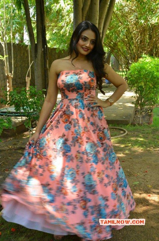 New Photos Tamil Actress Nikitha Narayan 416