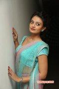 New Pictures Tamil Movie Actress Nikitha Narayan 9954