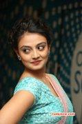 Nikitha Narayan Film Actress Dec 2014 Image 8084