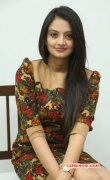 Nikitha Narayan Film Actress Nov 2014 Albums 4697