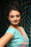 Nikitha Narayan Movie Actress 2014 Albums 7243