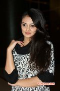 Nikitha Narayan South Actress Image 7337