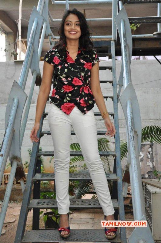 Nikitha Narayan South Actress Latest Images 5321