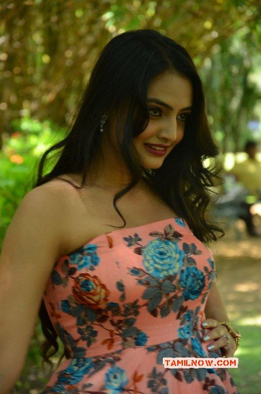 Nikitha Narayan South Actress Recent Photos 5835
