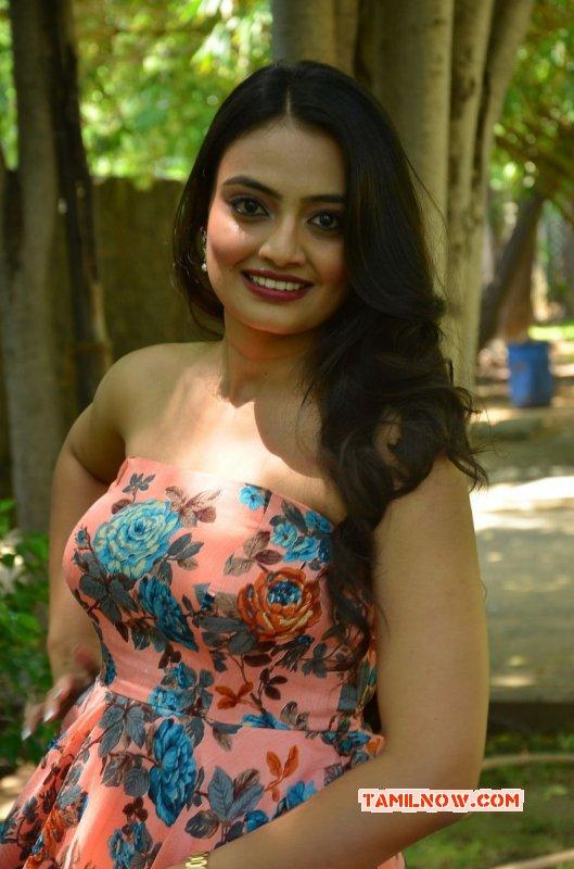 Nikitha Narayan Tamil Actress New Album 1215