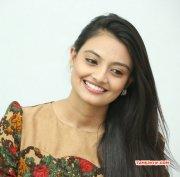 Nikitha Narayan Tamil Actress Recent Image 6245