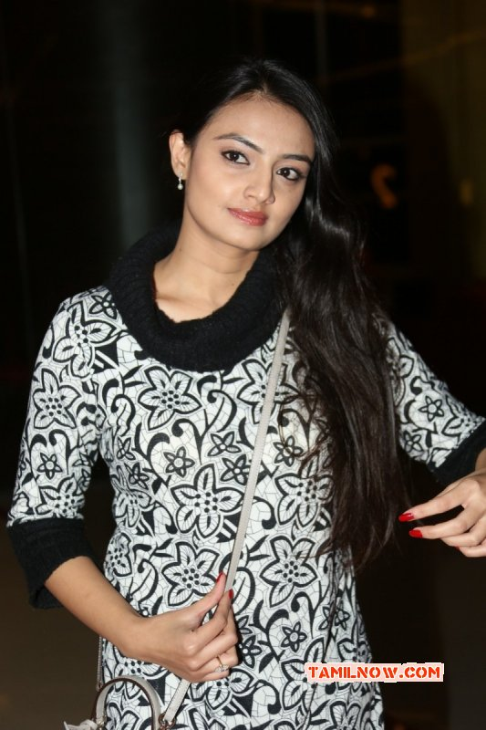 Nikitha Narayan Tamil Movie Actress Wallpaper 1691