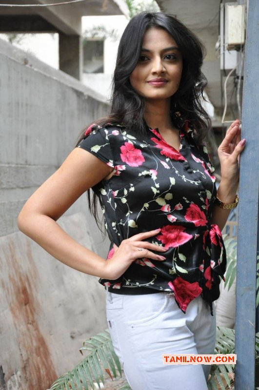 Photo Film Actress Nikitha Narayan 3047