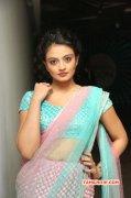 Recent Albums Nikitha Narayan 2283