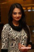 Recent Albums Nikitha Narayan Tamil Heroine 3534