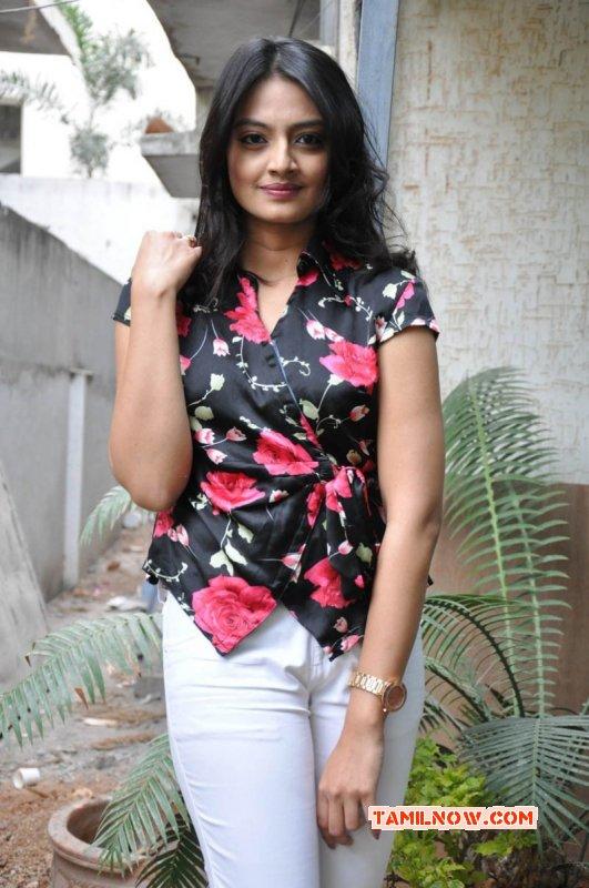 Recent Stills Tamil Movie Actress Nikitha Narayan 1257