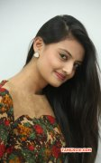 Recent Wallpapers Nikitha Narayan Tamil Heroine 2572