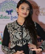 South Actress Nikitha Narayan Dec 2014 Stills 3162