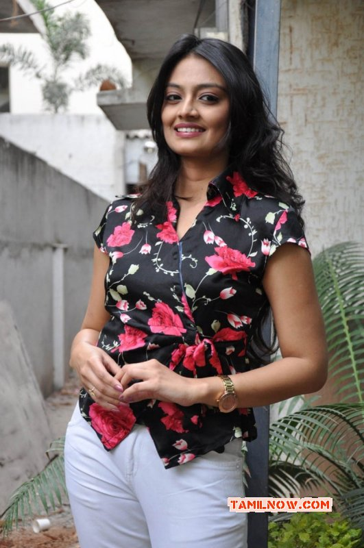 South Actress Nikitha Narayan Latest Photos 1387