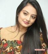 South Actress Nikitha Narayan Nov 2014 Picture 3353