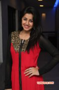 2015 Photo Nikki Galrani Film Actress 8139