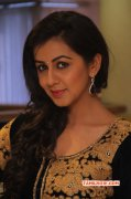 2015 Stills Nikki Galrani Cinema Actress 2592