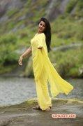 2017 Pic Film Actress Nikki Galrani 4615