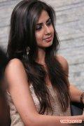 Actress Nikki Galrani 9999