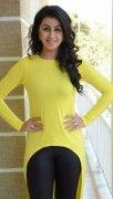 Actress Nikki Galrani New Photo 4271