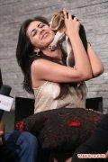 Actress Nikki Galrani Stills 5520