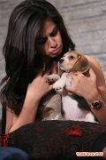 Actress Nikki Galrani Stills 9524
