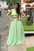 Cinema Actress Nikki Galrani Latest Image 8771