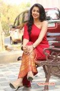 Cinema Actress Nikki Galrani Mar 2016 Pic 6506
